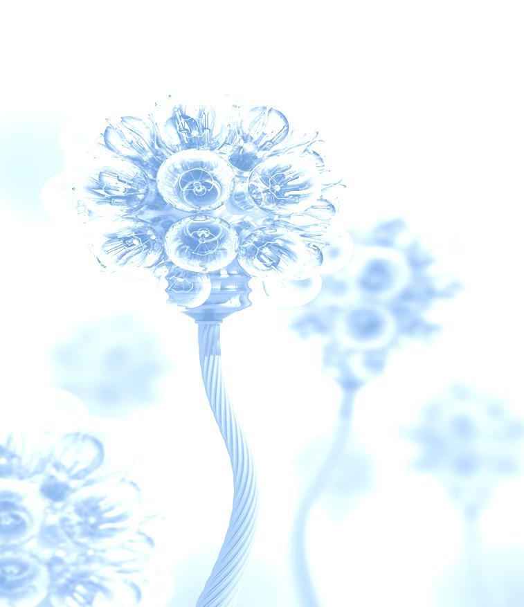 image001.jpeg