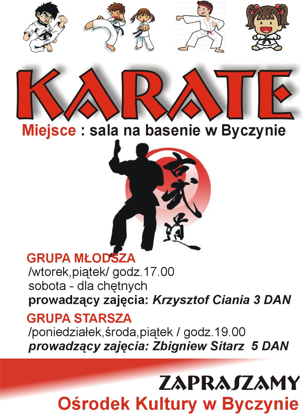 karate2013.jpeg