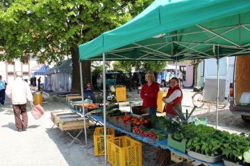 Galeria Otwarcie Rynku w Byczynie
