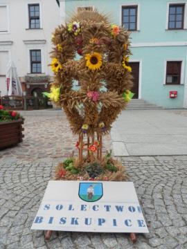 Galeria korony gminne 2015