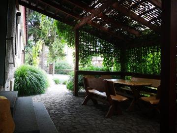 Galeria Bar na plantach